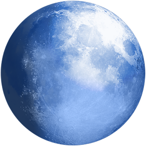 Pale Moon web browser 25.9.6