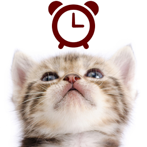 Cats Analog-Clocks Widget  1.0.6
