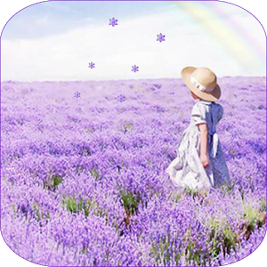 Lavender Live Wallpaper  1.4