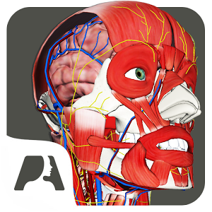 Pocket Anatomy Pro 1.1.68 [Paid]