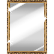Best Mirror 3.3 (Ad-Free)