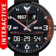 Falcon Watch Face