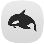 Orca for KWGT