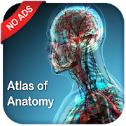 Gray's Atlas of Anatomy Pro (No Ads)1.1