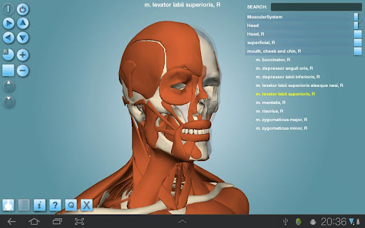 Anatronica 3d anatomy pro for windows and mac (2) video dailymotion.